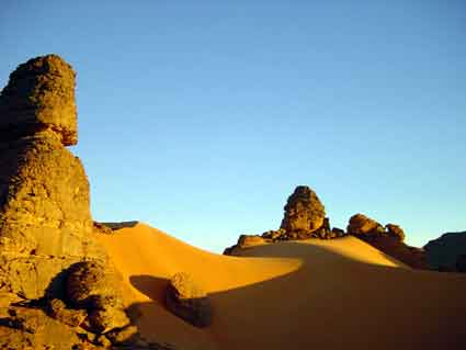 argelia2.jpg