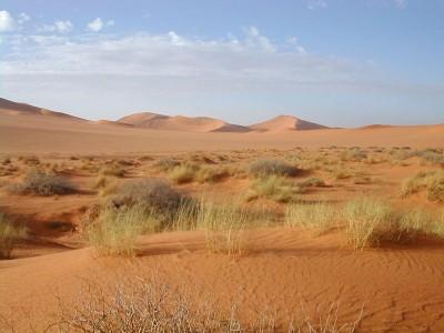 sahara-desierto.jpg
