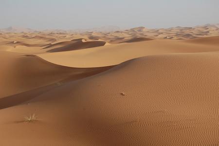 argelia10.jpg