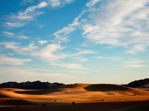 argelia-relacion.jpg