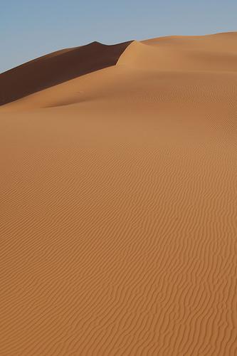 duna-desierto.jpg
